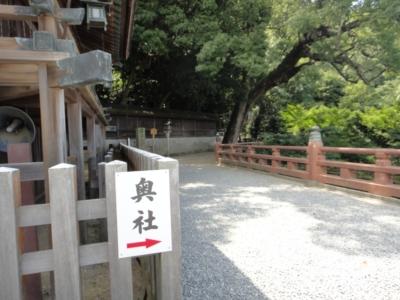 kagawa11.jpg