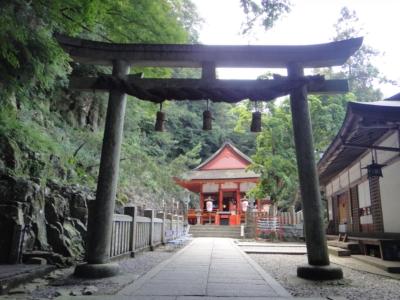 kagawa14.jpg