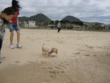 H24.04.29~05.02 琴が浜2