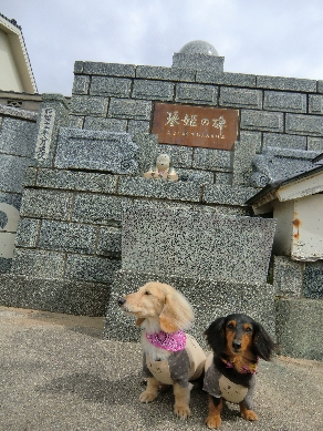 H24.04.29~05.02 琴姫と犬