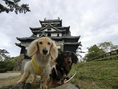 H24.04.29~05.02 城と犬