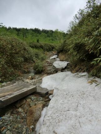 楠川の残雪