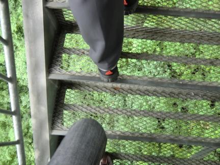 スケスケの階段