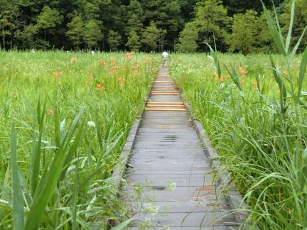2姫川湿原