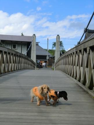 22大出の吊橋
