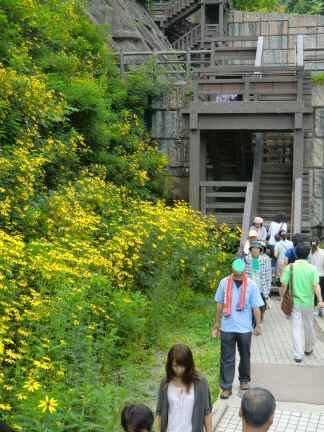 苗名滝の階段