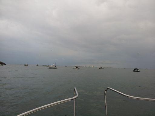 釣り①20131104