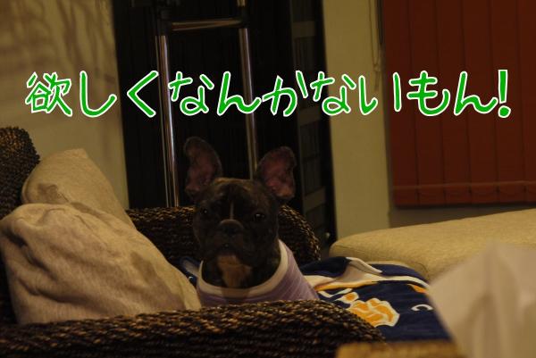 20121030_01.jpg