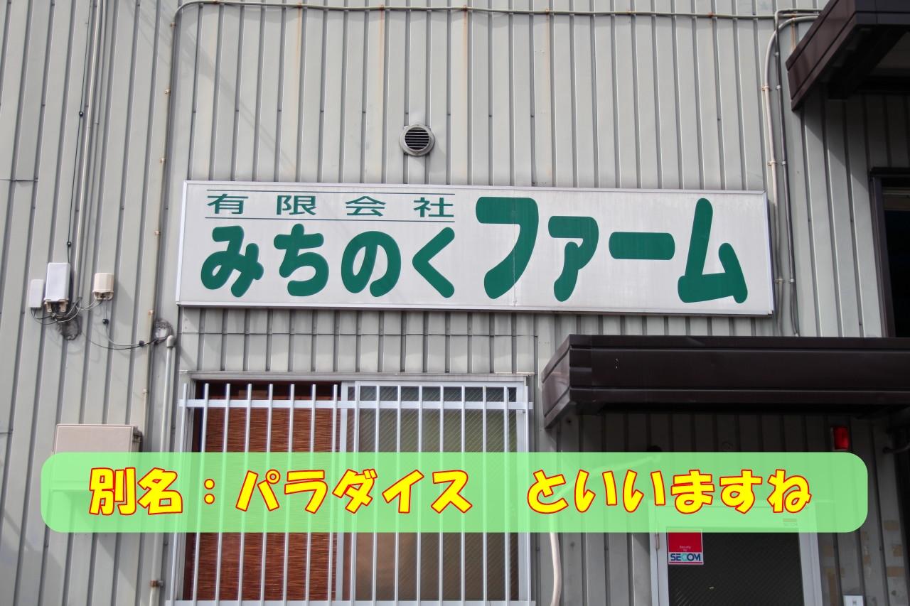0927巾着田