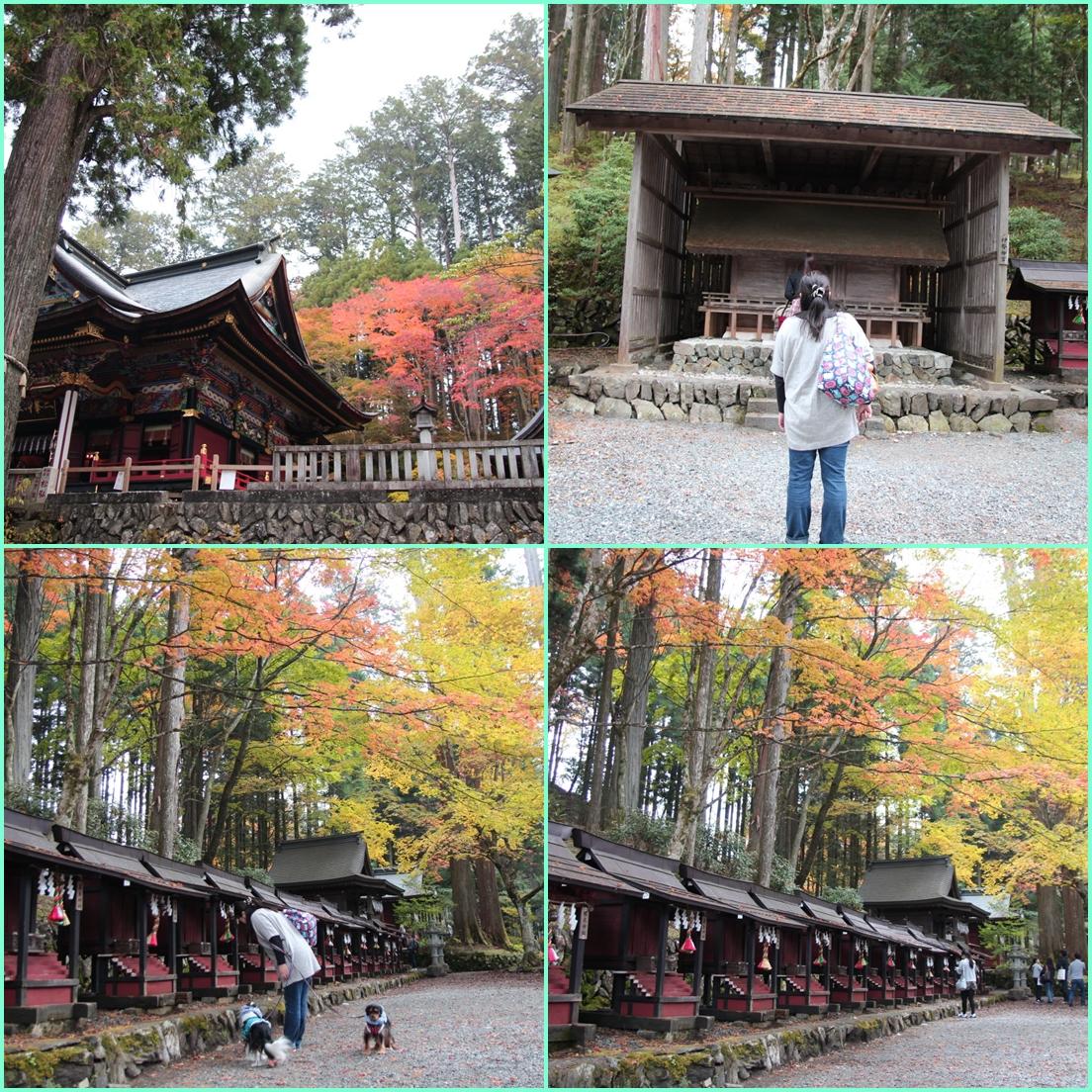 1026三峯神社