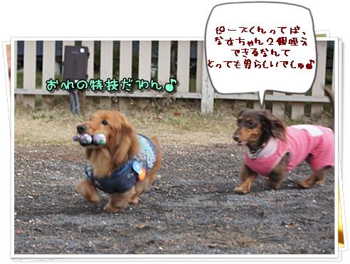 001_20121126164520.jpg