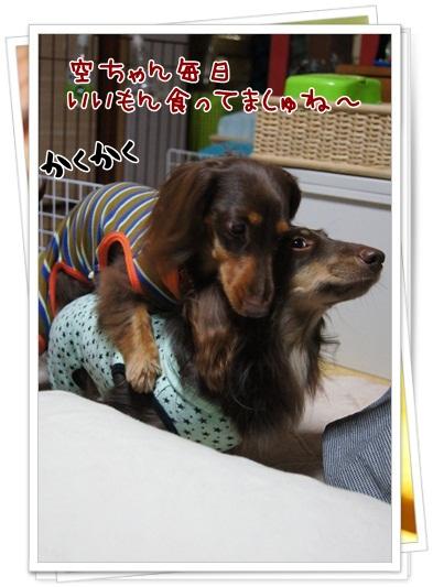001_20121209211226.jpg