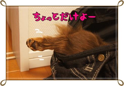 002_20120726010512.jpg