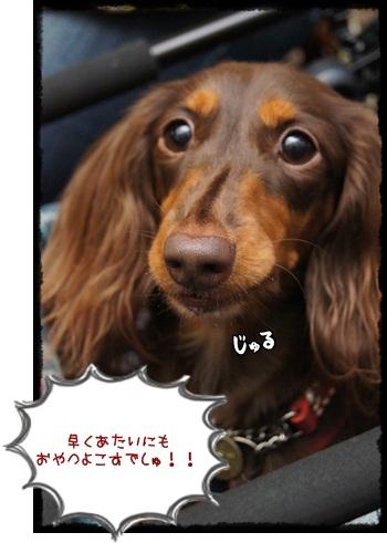 003_20121015211057.jpg