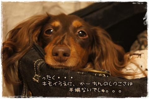 003_20121025004138.jpg