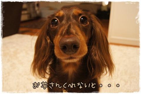 004_20121020110117.jpg