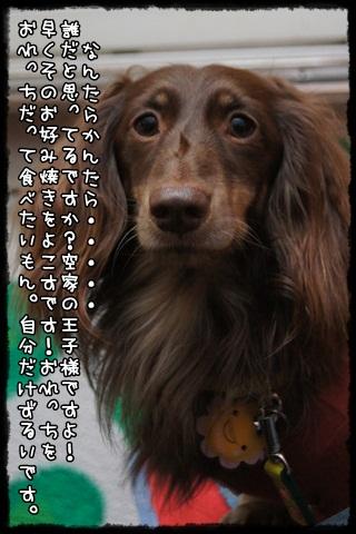 005_20121015211039.jpg