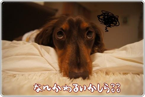 007_20120810020423.jpg