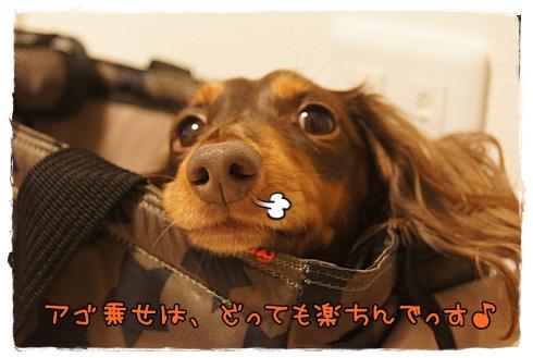 009_20121121001021.jpg