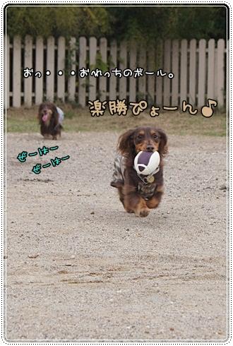 010_20121002001710.jpg