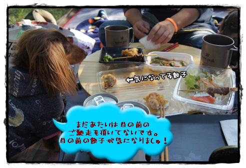 010_20121028154859.jpg