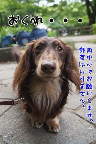 011_20120514221156.jpg