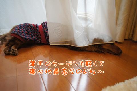 015_20120713071042.jpg