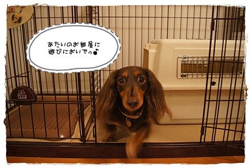 018_20120926211412.jpg