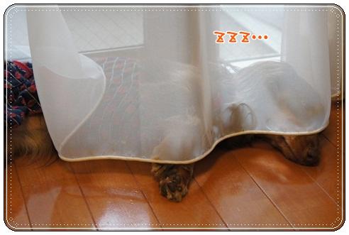 022_20120713072356.jpg