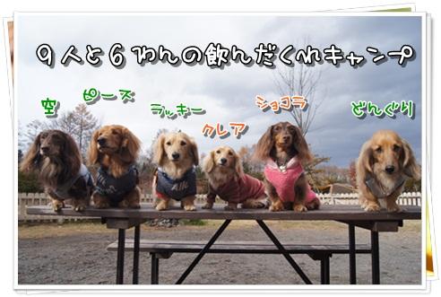 022_20121126163312.jpg
