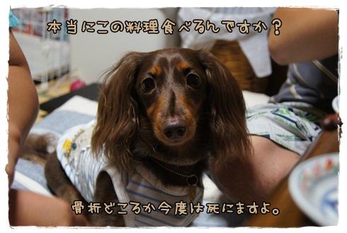 027_20120906204900.jpg