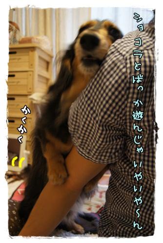 029_20120909231251.jpg