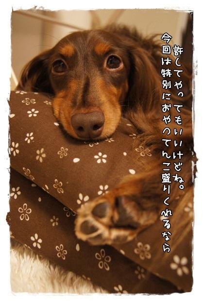 029_20120925212457.jpg