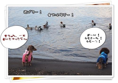 030_20130107213744.jpg