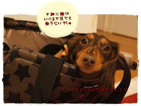032_20121205224132.jpg