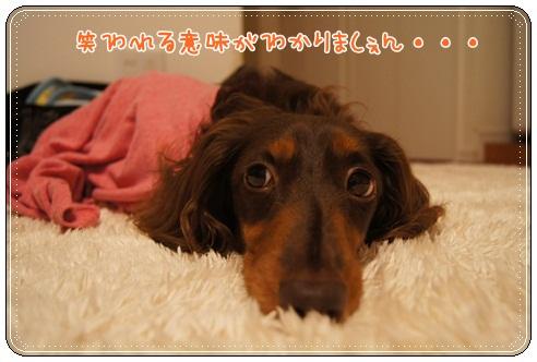 036_20120805030404.jpg