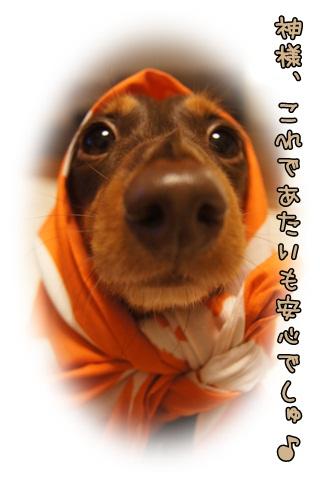 036_20121025231158.jpg