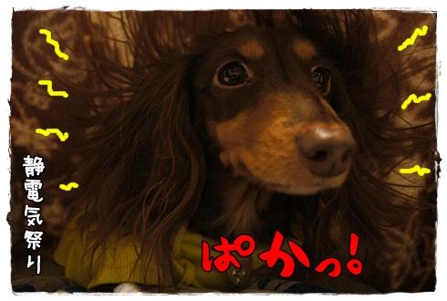 045_20121111153424.jpg