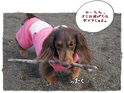 052_20130108220129.jpg