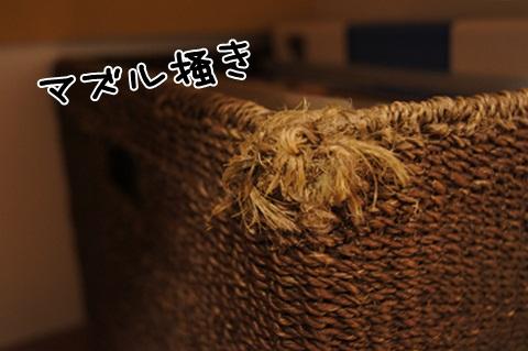 056_20120513224149.jpg