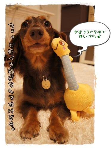 063_20121004232214.jpg