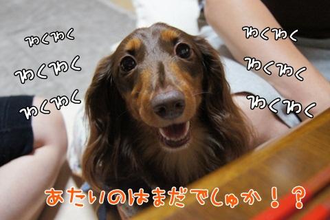 073_20120625214603.jpg