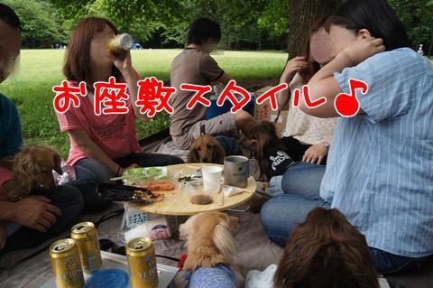 075_20120612214749.jpg