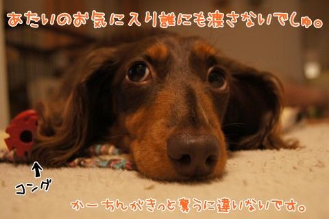 110_20120606002444.jpg
