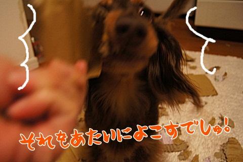 121_20120704220001.jpg