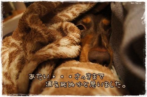 122_20121017231850.jpg