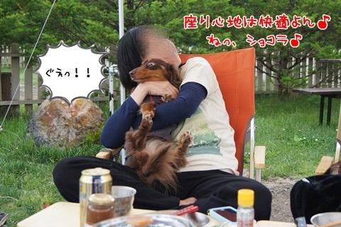 127_20120709112806.jpg