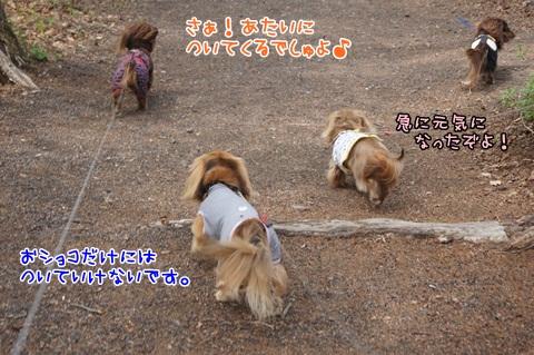 524_20120528192706.jpg