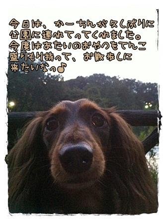 IMG_5861.jpg