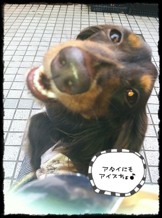 IMG_8711.jpg